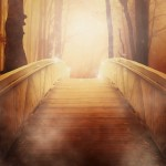 pathway to light